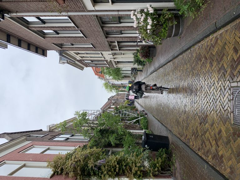 Netherlands Day 8 – Delft facilities tour